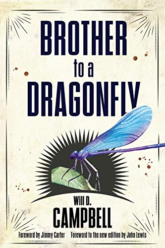 9781496816306: Brother to a Dragonfly (Banner Books)