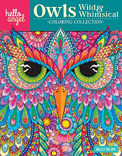 Hello Angel Owls Wild Whimsical Col Coll (Paperback)