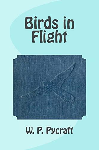 Birds in Flight (Paperback): W P Pycraft