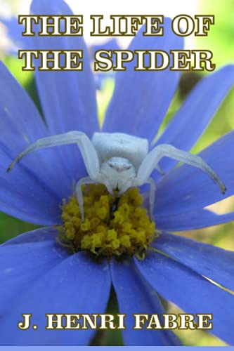 9781497328266: The Life of the Spider