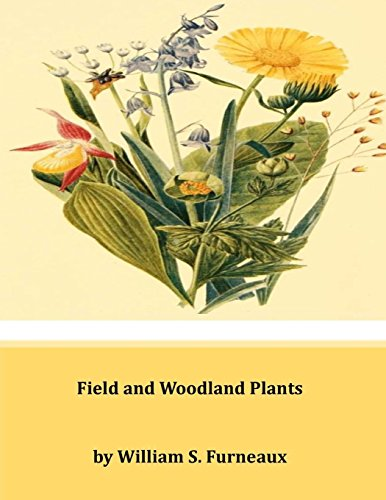 9781497403413: Field and Woodland Plants