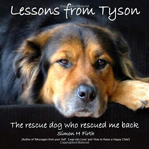 9781497516762: Lessons from Tyson: The true story of a rescue dog who rescued me right back