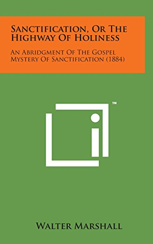 9781498156981: Sanctification, or the Highway of Holiness: An Abridgment of the Gospel Mystery of Sanctification (1884)