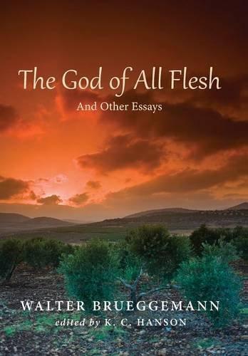 9781498206464: The God of All Flesh