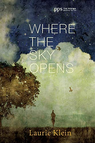 9781498230902: Where the Sky Opens: A Partial Cosmography (Poiema Poetry)