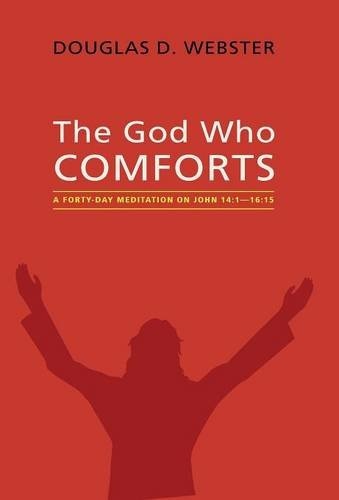 9781498234429: The God Who Comforts