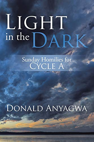 9781499097108: Light in the Dark: Sunday Homilies for Cycle A