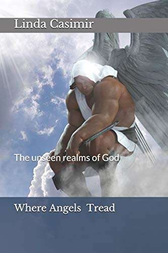9781499193640: Where Angels Tread: The unseen realms of God