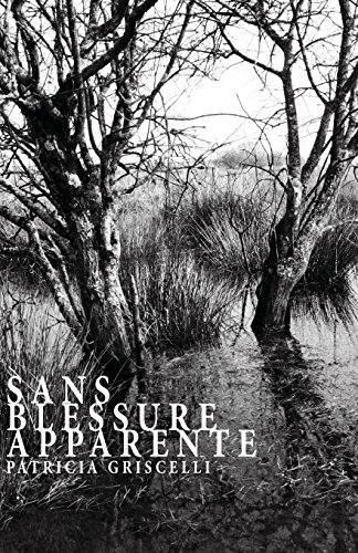 9781499398045: Sans blessure apparente (French Edition)