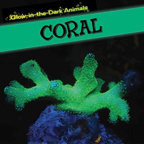 Coral (Glow-In-The-Dark Animals): Machajewski, Sara; Machajewski, Sarah