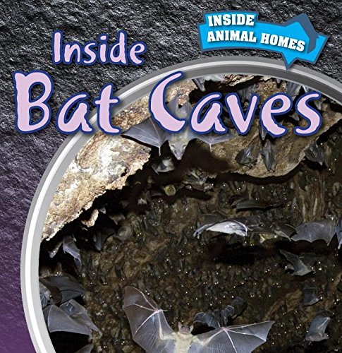 9781499408713: Inside Bat Caves (Inside Animal Homes)