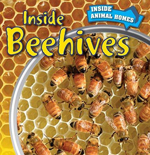 9781499408737: Inside Beehives (Inside Animal Homes)