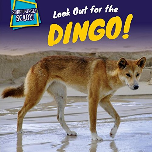 9781499408782: Look Out for the Dingo! (Surprisingly Scary!)