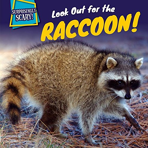 9781499408829: Look Out for the Raccoon! (Surprisingly Scary!)