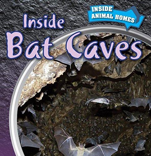 9781499409130: Inside Bat Caves (Inside Animal Homes)