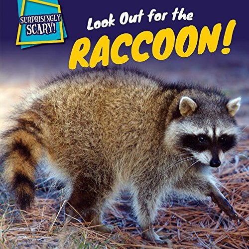 9781499409543: Look Out for the Raccoon! (Surprisingly Scary!)