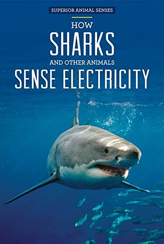 How Sharks and Other Animals Sense Electricity (Hardcover): Christine Honders