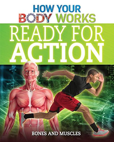 9781499412307: Ready for Action: Bones and Muscles (How Your Body Works)