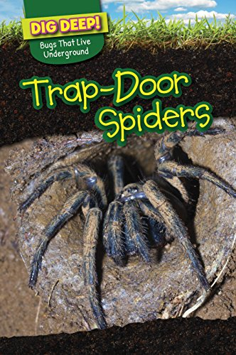 Trapdoor Spiders (Dig Deep! Bugs That Live Underground): Emily Wilson