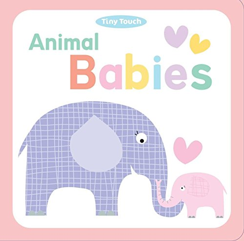 Animal Babies (Tiny Touch): Little Bee Books