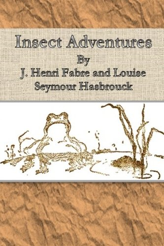 9781500196455: Insect Adventures By
