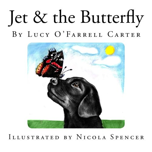 9781500224233: Jet & the Butterfly