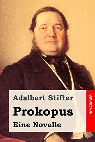 9781500253745: Prokopus: Eine Novelle