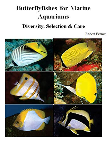 9781500425524: Butterflyfishes for Marine Aquariums: Diversity, Selection & Care