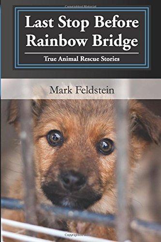 9781500446901: Last Stop Before Rainbow Bridge: Inspiring Stories of True Animal Rescues