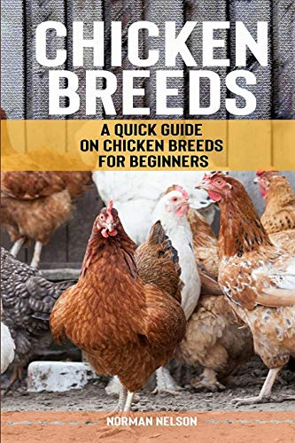 9781500689896: Chicken Breeds: A Quick Guide on Chicken Breeds for Beginners