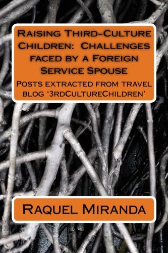 9781500741037: Raising Third-Culture Children - Challenges faced by a Foreign Service Spouse: Thoughts extracted from travel blog '3rdCultureChildren'