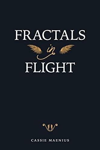 9781500800772: Fractals In Flight
