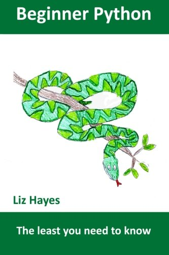 Beginner Python: The least you need to: Hayes, Liz