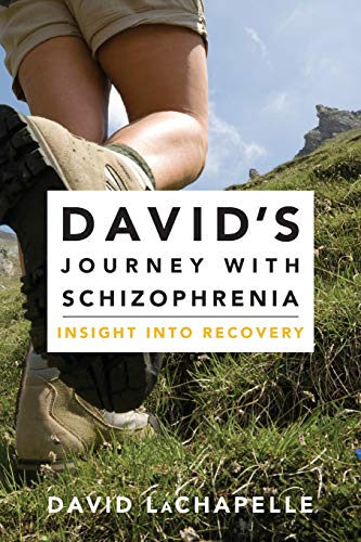David's Journey with Schizophrenia: Insight Into Recovery: LaChapelle, David