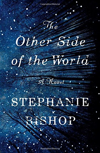 9781501133121: The Other Side of the World: A Novel