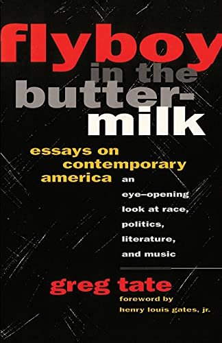 9781501136979: FLYBOY IN THE BUTTERMILK: ESSAYS ON CONTEMPORARY AMERICA