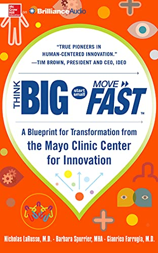 9781501211850: Think Big, Start Small, Move Fast: A Blueprint for Transformation from the Mayo Clinic Center for Innovation