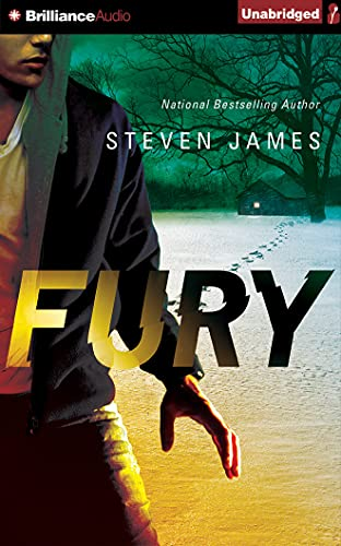 Fury (Blur Trilogy): James, Steven