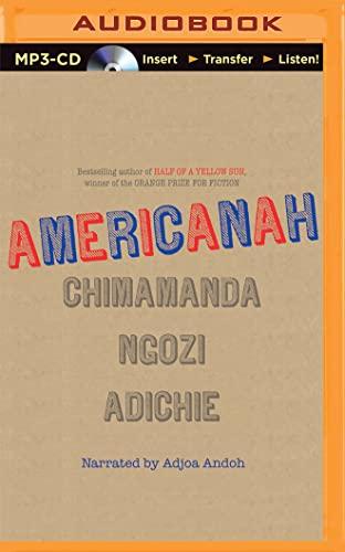 9781501258923: Americanah