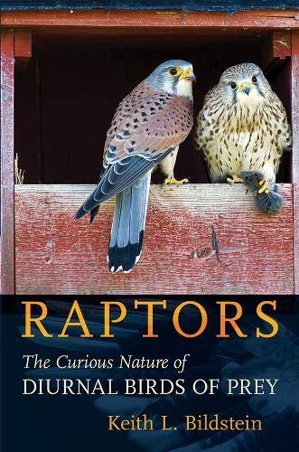 Raptors The Curious Nature of Diurnal Birds of Prey