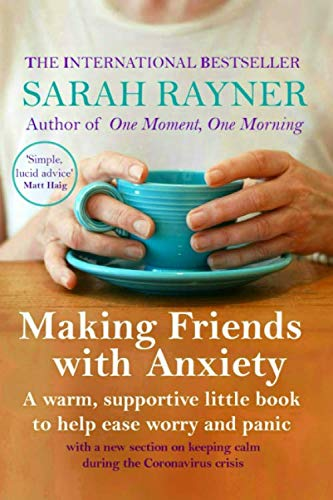 9781502345424: Making Friends with Anxiety: A warm, supportive little book to ease worry and panic - 2019 edition