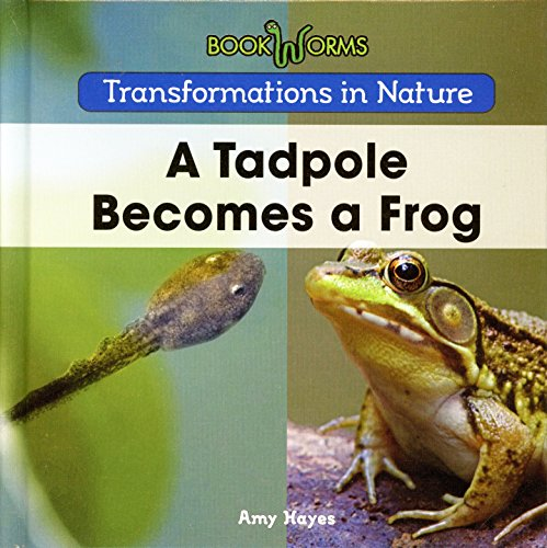 9781502608208: A Tadpole Becomes a Frog (Transformations in Nature: Bookworms)
