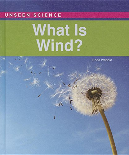 9781502609243: What Is Wind? (Unseen Science)