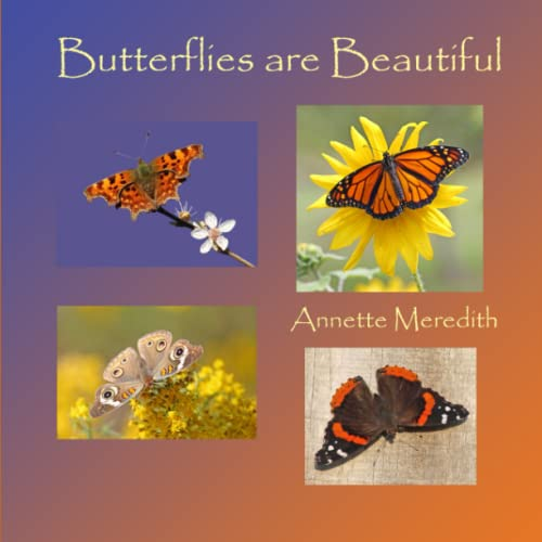 9781502735911: Butterflies are Beautiful (Nature on Our Doorstep)