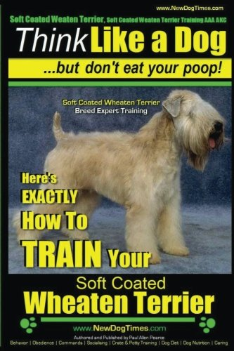 Soft Coated Wheaten Terrier, Soft Coated Wheaten Terrier Training AAA AKC | Think Like a Dog ~ But ...