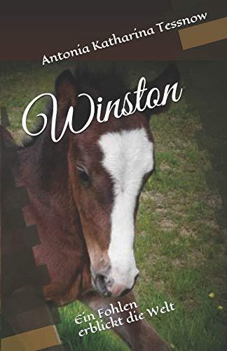 9781502923882: Winston: Ein Fohlen erblickt die Welt (Volume 1) (German Edition)