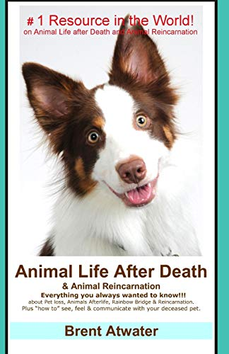 9781503067929: Animal Life After Death & Animal Reincarnation: Pet Loss Answers for all your heart's Questions!