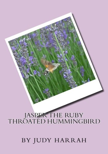 Jasper the Ruby Throated Hummingbird: Judy K Harrah