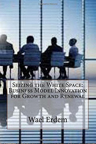 9781503209268: Seizing the White Space: Business Model Innovation for Growth and Renewal