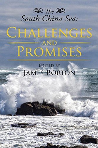 9781503537354: The South China Sea: Challenges and Promises